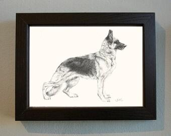 Original German Shepherd Drawing in Black Frame