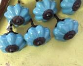 Knobs - Blue Melon Knobs