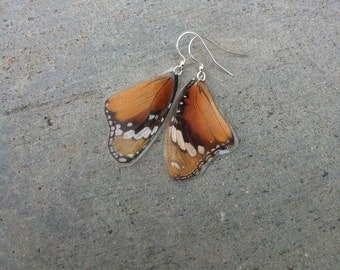 Real Monarch Butterfly Wing Earrings, Earthy Organic Jewelry, Natural, Bohemian Jewelry, Unique Gift, BW064