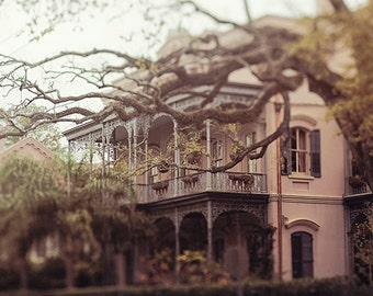 "New Orleans Fine Art Photography ""Southern Beauty"" architecture, garden district, wall art  spring photograph, romantic, dreamy, mysterious"