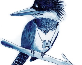 Belted Kingfisher, Limited Edition Print