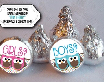 "TWINS, 3/4"" Candy Stickers, Favor Labels, Baby Gender Reveal Party, Baby Shower, Pink & Blue Baby Owls, Sheet of 108 Stickers"
