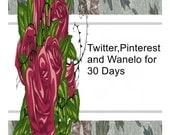 Twitter,Pinterest and Wanelo for 30 Days-I will pin up to 50 items to My Pinterest.