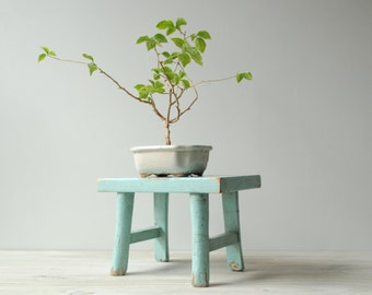Vintage Stool, Blue Wood Stand, Wooden Stool, Display Stand