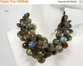 ON SALE Smooth Labradorite Coins Lentil Beads Top Drilled Multicolor Flash Earth Mined Gemstone Half Strand - 8x8 to 11x11mm - 14 Beads