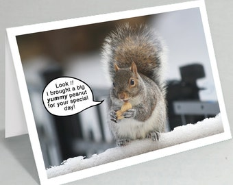 Funny squirrel greeting card - birthday card - Cute Mothers Day card - Housewarming card - Dad birthday card Fathers Day (Blank inside)