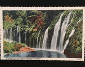 Vintage California Postcard Mossbrae Falls at Shasta Springs - Unused