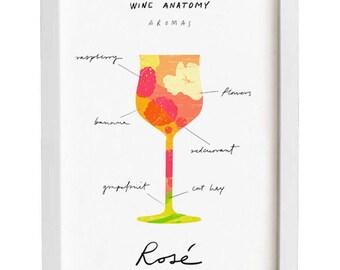 "Rosé Wine Art - Wine Anatomy print - Wine Illustration - 11""x15 - archival fine art giclée print"
