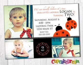 Ladybug Birthday Invitation, Girl Birthday Party