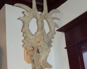 Styracosaurus trophy mount Skull Sculpture NW artist Michael Gonzales ~ Hand Built Timberlind Clay