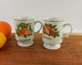 Pair Florida Souvenir Porcelain Mugs Cups - Oranges Citrus