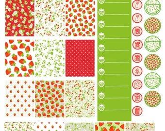 Strawberry Dreams Erin Condren Printable Stickers