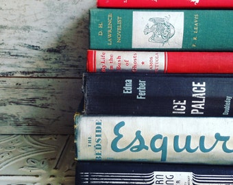 Silver, blue, red, teal   Books Instant Library Collection Decorative Vintage Book Bundle Photography Props Beige French Country Neutral
