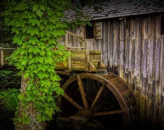 Sluice and Waterwheel at the Old John Cable Grist Mill in Cade's Cove in the Smoky Mountains in Tennessee No.FF670489 Historical Photograph