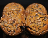 4 Pieces 16mm Holly -Genuine Five Mukhi Brown RUDRAKSHA Seeds Large Round Beads Pendant  - J1032