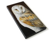 Barn Owl painting #3, realistic wildlife art original, 6x12