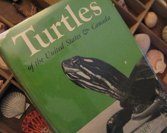 TURTLES of  United States & Canada Beautiful HARDCOPY 1961 Printing  1939 SEA turtles Mud Diamond Back  Box Snapping Etc 99 Photos Much Info