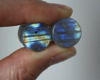 "1/2"" Blue Gold Labradorite Plugs"