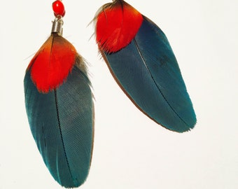 Beautiful Blue Parrot Feather Earrings with Huayruro Seeds