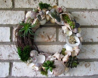 Seashell Wreath with Artificial Succulents