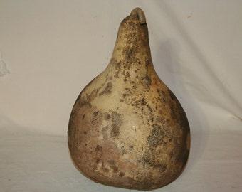 Kettle Gourd, uncleaned