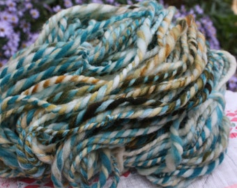 RawCo. Winter Forest // Super wash Merino // Hand spun yarn