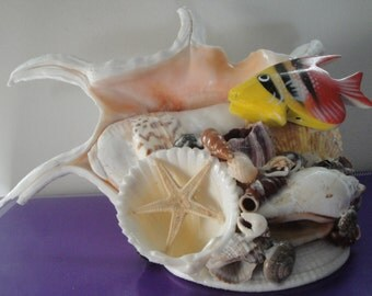 Seashell Sea Shell Arrangement w/ Fish. Philippines