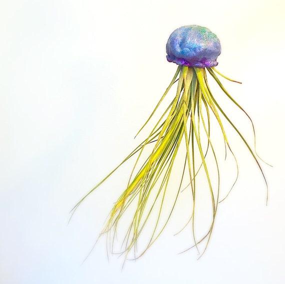 Jellyfish Air Plant Holders 4 Pack: Handmade Jellyfish Airplant Holder // Tillandsia Holder