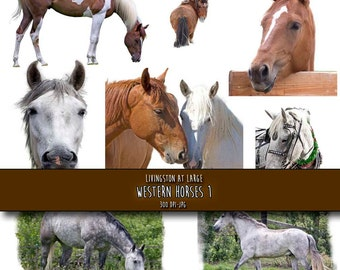 9 Western Horses Collage Images INSTANT Digital Download Scrapbook Printable-JPG