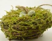 Ring Bearer Bird's Nest with Moss