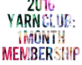2016 Yarn Club - 1 Month October Membership - Exclusive Colorway