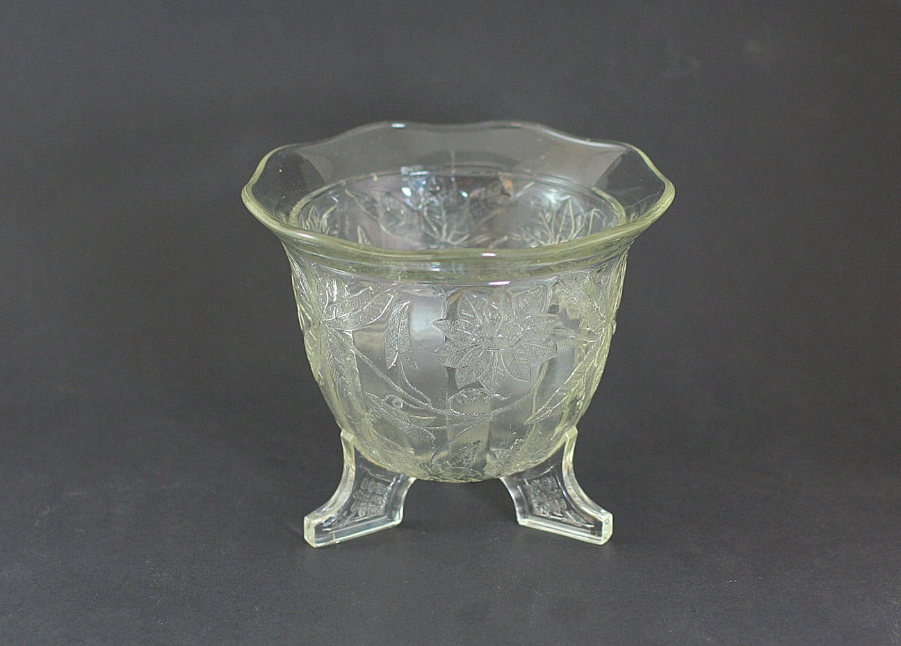 Rare Jeannette Depression Glass Crystal Floral Poinsettia 3