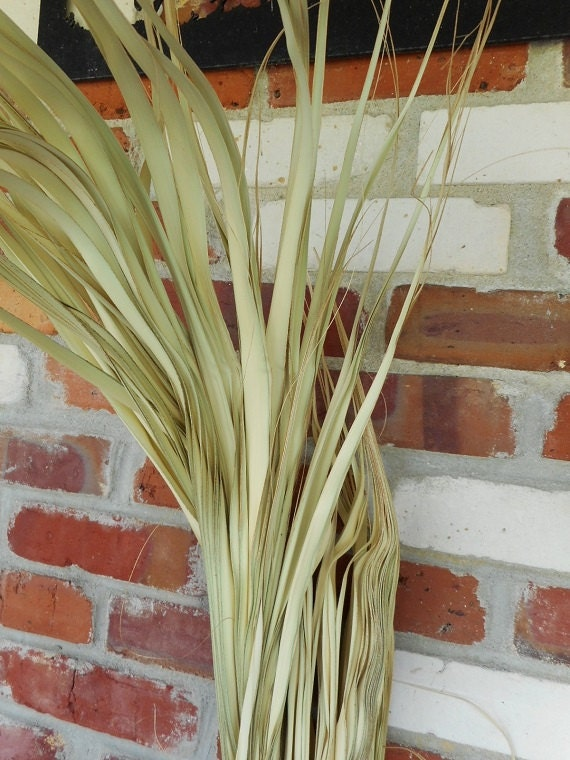 How To Weave Palm Fronds Into A Basket : Palm frond for weaving or crafts basket supplies sabal