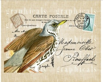 Blue brown bird Paris decor Instant clip art Digital download graphic image for Iron on fabric transfer paper burlap pillows totes No. 559