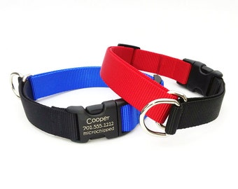 EasySlip Webbing Dog Collar with Laser Marked Personalized Buckle