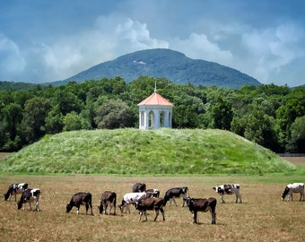 Natice American Nacoochee Mound (1350 to 1600) with Victorian Gazeebo (1890), 'Till the Cows Come Home' Series, Pastoral