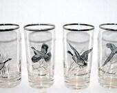 Bird glasses vintage silver rimmed  set of 4 bird motif glasses hi ball glasses
