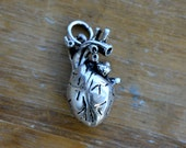 1 - Anatomical Heart Charm Antique Silver Realistic Heart Organ Charm Heart Pendant Charm Silver Heart Charm Jewelry Supplies (BD109)