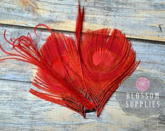 CLEARANCE Red Peacock Feather Pad Embellishment - Petite Feathers - Curly Feathers - DIY Headband Clips Hats Supplies Pre-made Crafts
