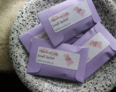 Hens Party Favor Lilac Sachets Car Air Freshened Spring Housewarming Purple Gift for Sister Decor 2016 Cottage Chic Seed Packet Favor Pastel