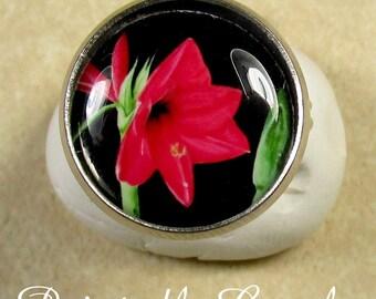Amaryllis Ring - Red Amaryllis Christmas, Holiday Adjustable Ring, Jewelry