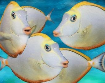 Blond Naso Tangs TROPICAL FISH, Nautical, Beach Decor, Coastal Style, Marine, Fish Art Print, Ocean Art, Coastal Decor, Available on Canvas