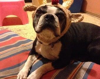 Crochet Reindeer Dog Hat for Small Dog