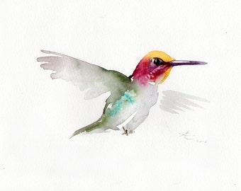 Hummingbird Watercolor original painti