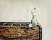 Rustic Dining Room Wall Art, Kitchen Photography, Vintage Style Farmhouse Decor, Kitchen Wall Decor  | 'Cola No. 2' - Aged Page Series