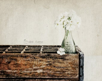 rustic dining room wall art kitchen photography vintage style farmhouse decor kitchen wall