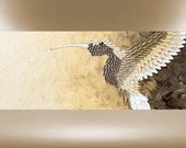 original painting hummingbird textured art golden bird garden 40x16 FREE SHIP