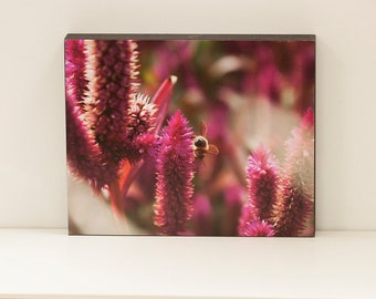 Honeybee  Wall Panel - 8x10 Photo Standout, Ready to Hang Nature Photography, Purple Mauve Pink Nature Wall Art, Ready to Hang, OOAK