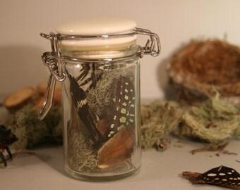 Fairy Wings in a Jar #2