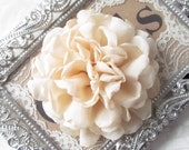 Beige  Fabric Flower / Hair Flower / Beige Rose Fabric Flower / Chiffon Flower  FLW-06   NO CLIPS